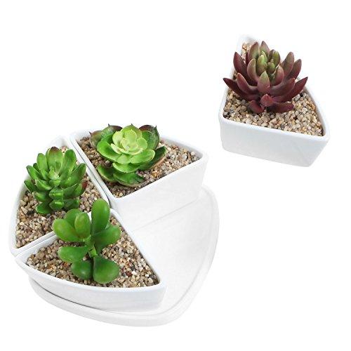 Decorative White Ceramic Centerpiece Planter Set Of 4 Small Water Draining Succulent Pots W Plant Saucer
