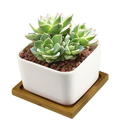 Ceramic Flower PotsY&MTM Decorative Mini White Square Sucuulent Flower Pot  Cactus Plant Pot with Bamboo Tray