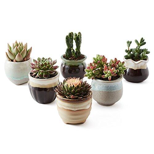 SUN-E 6 in Set 25 Inch Ceramic Flowing Glaze Black&White Base Serial Set Succulent Plant Pot Cactus Plant Pot Flower Pot Container Planter