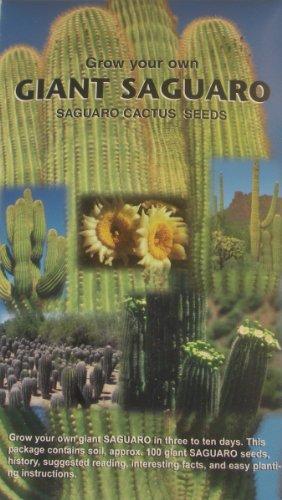 Grow Your Own Giant Saguaro - Contains Aprox 100 Cactus Seeds - Southwest Novelty Gift - Souvenir - Plant Your Own Cactus Garden - Cacti