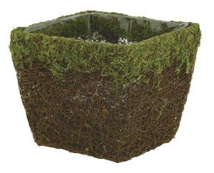 5 Moss and Vine Square Pot Cover with Liner Florist Supply