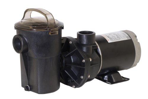 Hayward Sp1580x15tl Power-flo Lx Series 1-12-horsepower Pool Pump With Twist Lock