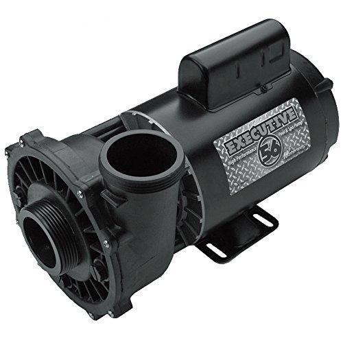 Waterway Plastics 3720821-1D Executive 56 Frame 2 hp Spa Pump 230 V