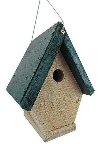 Jcs Wildlife All Cedar Chateau Wren Bird House W Hanging Cable