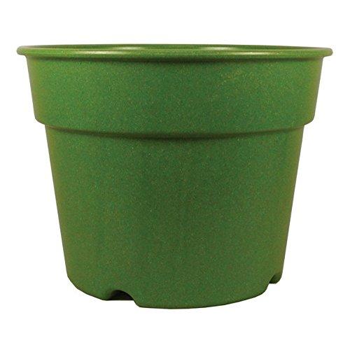 Rossos International P5-4 56 X 71 Grass Decorative Biodegradable Bamboo Pot