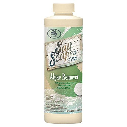 SaltScapes Saltwater Pool Care - Algae Remover
