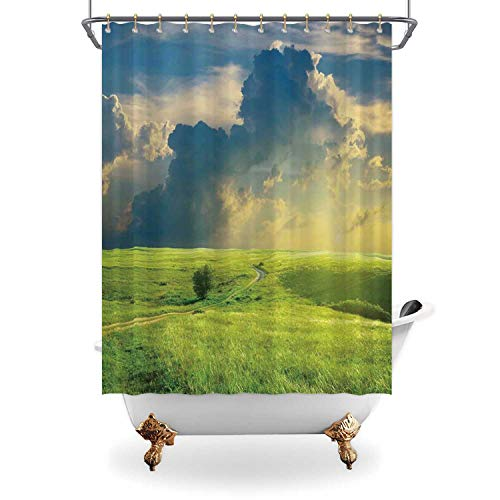 ALUONI Nature Fabric Shower CurtainSummer Landscape with Grass Road Clouds Rural Bathroom Curtain View Bath Curtain Home Decor with Hooks71 in x 79 in