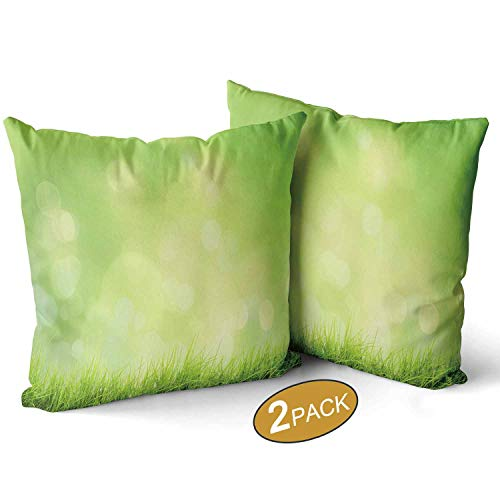 Nine City Spring or Summer Nature Landscape with Grass and Bokeh ColorfulsSet of 2 Pillow Case Sofa Bed Throw Cushion Cover Decoration 12 X 12