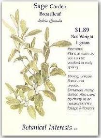Sage Garden Broadleaf Perennial Seeds - 1 Gram - Salvia