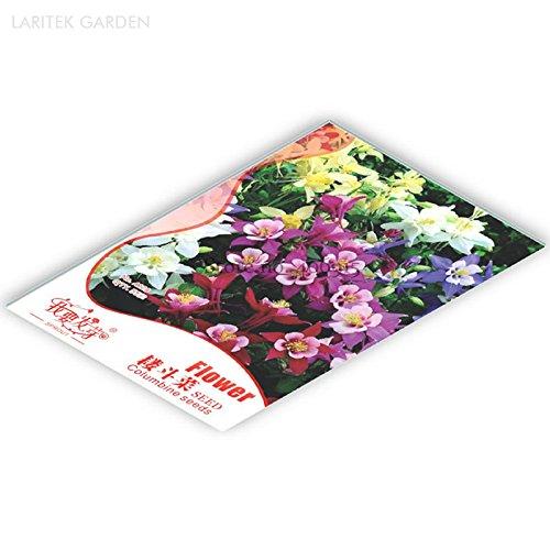 Mixed Garden Columbine Perennial Aquilegia Flowers Original Pack 50 Seeds very beautiful garden flowers IWSB128