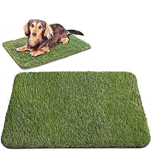 Golden Moon Doormat Series Pe Synthetic Artificial Turf Grass Rubber Backed For Doorway 2362&quotx1575&quot