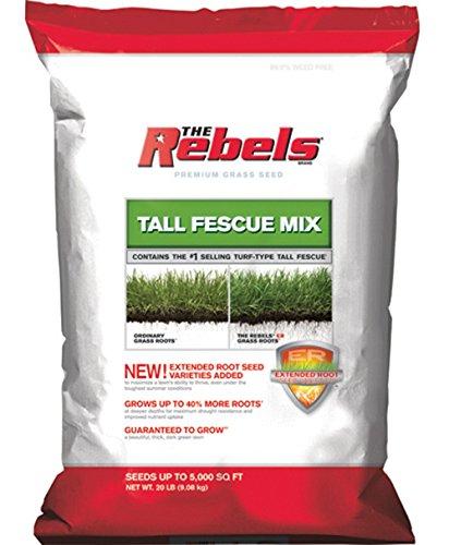 Pennington Seed Rebel Turf Type Tall Fescue 5000 Sq Ft 20 Lb