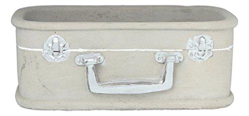 Floridus Design 4 x 10 Grey Cement Suitcase Planter