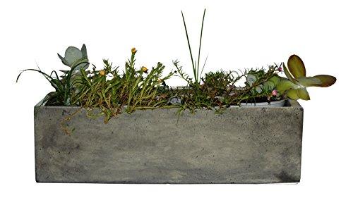 Happy Planter Rectangle Natural Cement Fiber Planter Size - 18 x 7 x 5 Color - Grey Cement