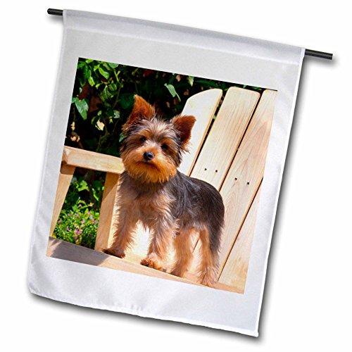 Danita Delimont - Dogs - Yorkshire Terrier standing on wooden chair - 12 x 18 inch Garden Flag fl_206393_1