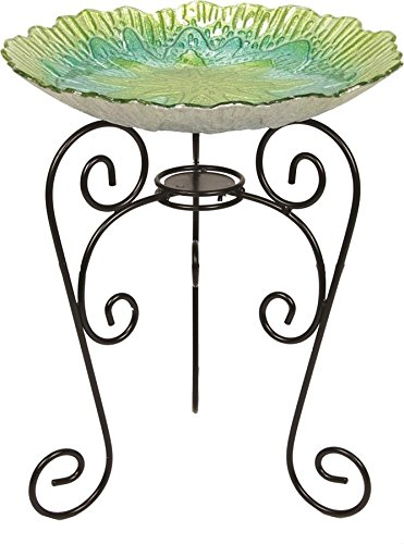 Beckett Corporation Spring Shell Birdbath with Stand Green