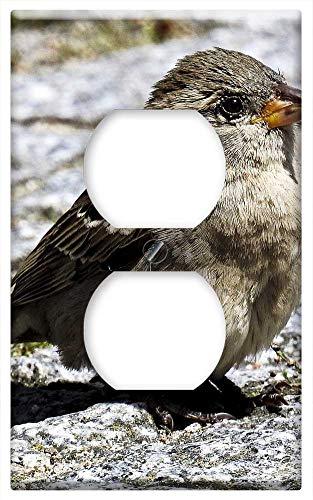 Switch Plate Outlet Cover - House Sparrow Sperling Bird Songbird Garden Bird 8