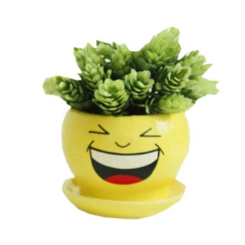 Creative DecorGift Laughing Cartoon Earthenware Planter Flower Pot 3527