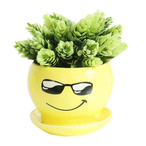 Creative DecorGift Show Off Cartoon Earthenware Planter Flower Pot 3527