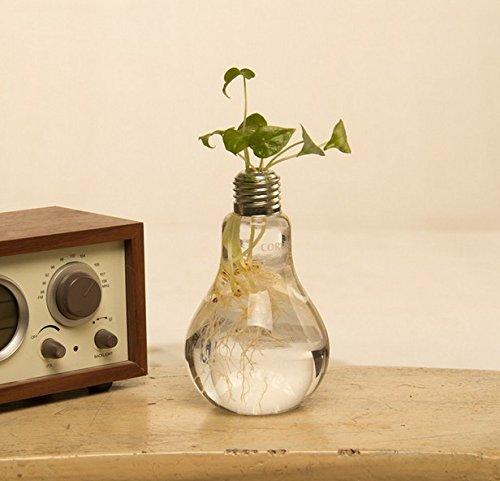 Fashionstorm Home Decor Creative Glass Bulb Vase Water Planting Glass Vessel Desktop Flower Potswater Planter