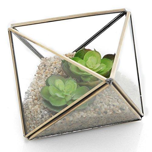 Diamond Shape Glass Prism Terrarium With Brass Rim  Air Plant Display Case  Tea Light Candle Holder