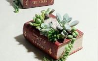 Sun-e-Charming-Planter-Pot-Book-Design-Succulent-Planter-Flower-Pot-Plant-Box-Container-small-14.jpg