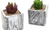 3-Inch-Textured-Cement-Square-Box-Succulent-Plant-Pots-Natural-Stone-Design-Cactus-Planters-Set-Of-28.jpg