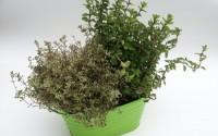 3-Pretty-Ribbed-Metal-Plant-Pot-Holders-Green-23cm-49.jpg