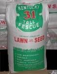 The-Dirty-Gardener-Kentucky-31-Tall-Fescue-Lawn-Grass-50-Pounds-48.jpg