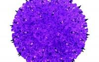 Bethlehem-Lighting-Indoor-outdoor-Mini-Star-Christmas-Light-Sphere-50-Purple4.jpg