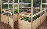 Outdoor-Living-Today-Raised-Cedar-Garden-Bed-with-Deer-Fencing-Kit-8-x-8-ft-25.jpg