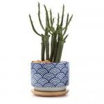 T4u-3-Inch-Ceramic-Japanese-Style-Serial-No-3-Sucuulent-Plant-Pot-cactus-Plant-Pot-Flower-Pot-container-planter6.jpg