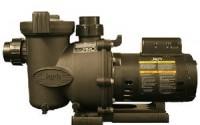 Jandy-Fhpm-2-0-Flopro-Single-Speed-2-horsepower-Swimming-Pool-Pump11.jpg